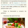 Alimentation Grossesse Femme Enceinte P12