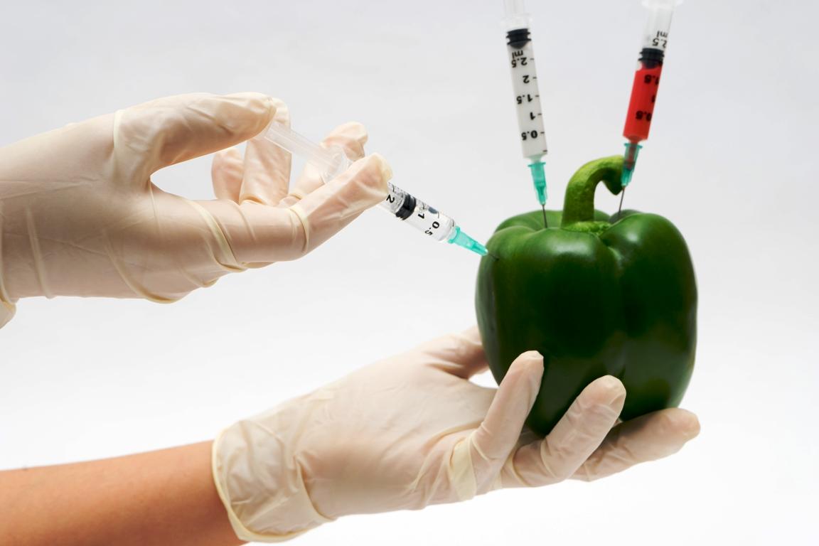 Organisme génétiquement modifié